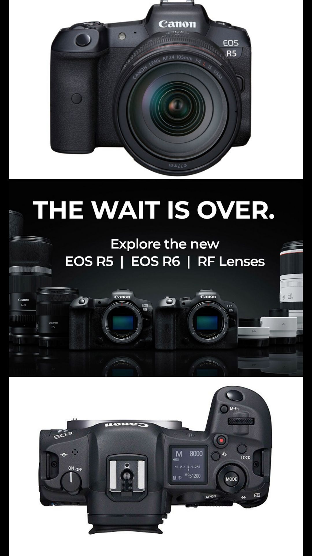 Canon EOS R5 VS R6: Everything You Need To Know